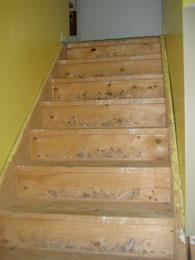 Brazilian Cherry Stair Treads Ottawa Ontario